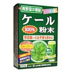 山本漢方ケール粉末100% 85g